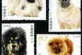 2006-6 《犬》特种邮票