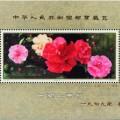 回收J42M云南山茶花小型張郵票