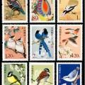 普31 中國鳥普通郵票