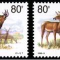 1999-5 《馬鹿》特種郵票(中國與俄羅斯聯合發行)