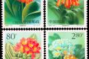2000-24 《君子兰》特种邮票、小全张