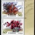 2002-14 《沙漠植物》特種郵票