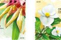 港澳台邮讯:香港邮政8月17日将发行《香港珍稀植物》邮票