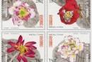 新邮背景:澳门邮政9号发行的莲花邮票