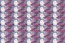 香港10元塑料钞整版钞