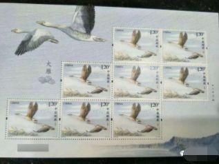 《大雁》特种邮票发行预告