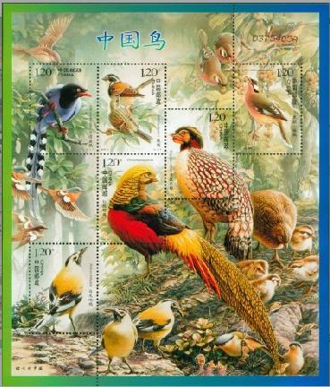 2008-4T《中国鸟》特种小版