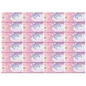 中国航天神舟十号塑料测试钞24联体 大炮筒纪念钞