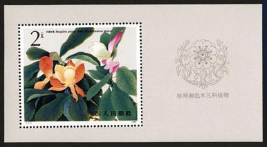 T111M珍稀濒危木兰科植物