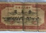 1951年骆驼队纸币市场行情分析