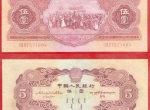 56年5元人民币价格分析