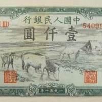 壹仟圆--牧马
