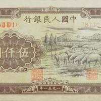 伍仟圆--牧羊