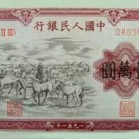 壹万圆--牧马