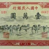 壹万圆--骆驼队