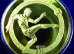 第12届足球世界杯金币值多少钱  市场行情分析